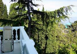 Приморский  парк - Алушта  отель Приморский  парк    Стандарт 2-местный 1-комнатный